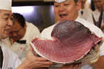 Bài 15: Cá làm sushi