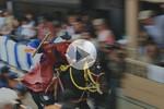 Lễ hội phi ngựa